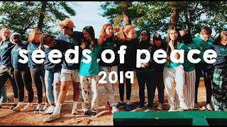 Gambar cover seeds of peace/2019