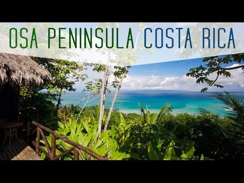 Osa Peninsula - Costa Rica by Frog TV