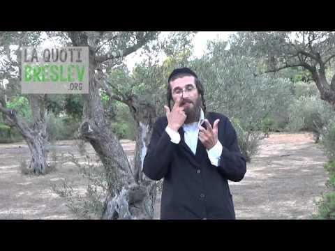 Principes de la foi Juive selon Rabbi Nahman