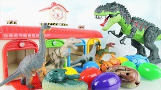 Learn Names of Dinosaurs with Tayo M&M. Dinosaur Fun Toys Jurassic World  T Rex 4D Puzzle Eggs