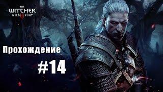 Witcher 3 The Wild Hunt (часть 14)