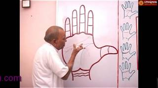 PALMISTRY PART   125 IN HINDI