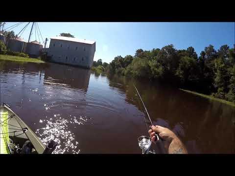 Yakin' And Fishin' At Atkinson Mill Lake - Johnston County, NC  8/25/18