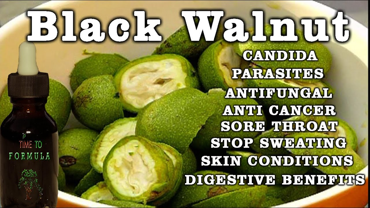 Black Walnut And Wormwood Complex Side Effects Wooden Thing