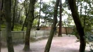 2011年 2月10日 奈良市の唐招提寺境内にて鑑真和上御廟を撮影致...