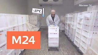 """""""Наизнанку"""": Краковская колбаса - Москва 24"""