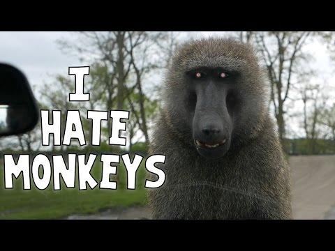 Squiddy Vlogs - I HATE MONKEYS! [24]