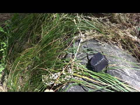 Найден камень танзанит