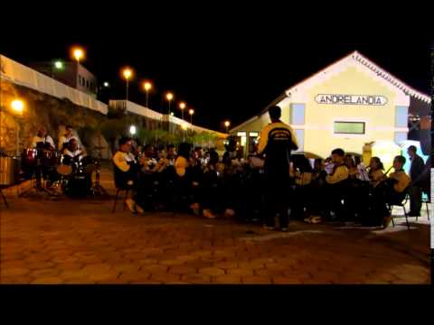 No More Lonely Nights - Banda Pio X (Andrelândia - MG)