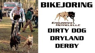 Bikejoring | Dirty Dog Dryland Derby | Day 1