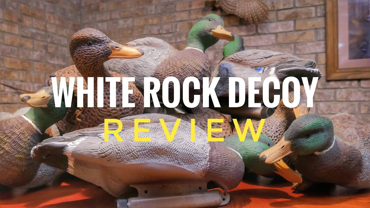042d295437979 White Rock Decoy Pool 7 Magnum Mallards and Nomad Floaters - Full Review.  Duck Gun Chronicles