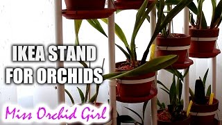 Using IKEA plant stand SOCKER with Orchids