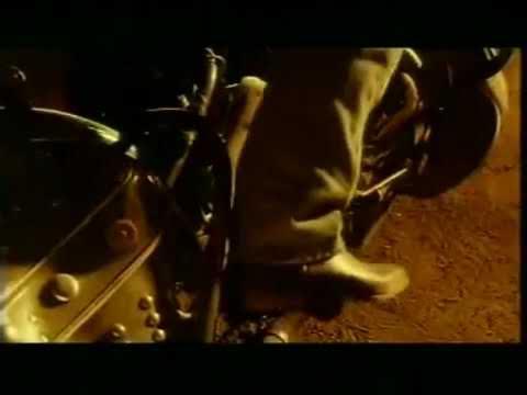 Красная плесень - Стиморол