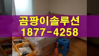 벽장 곰팡이 없애는법, 안방 작은방 벽지 곰팡이제거 (…