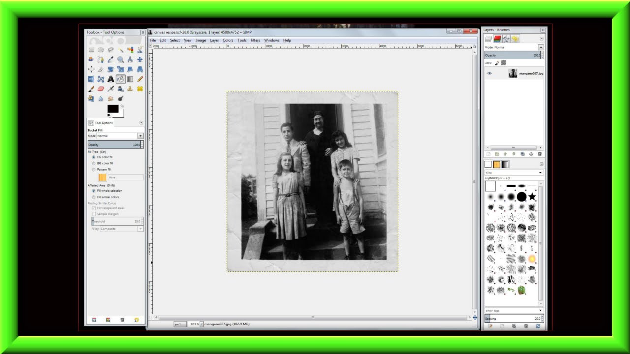 How To Add A Missing Border & Resize The Canvas Of A Photo Using ...