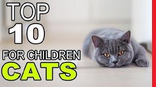 Top 10 Best Cat Breeds For Children