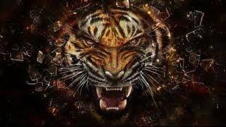 Шикарное лазерное 3D шоу - огромный тигр!