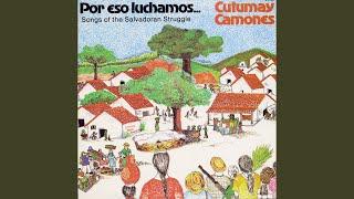Play Vamos Ganando La Paz (We Are Winning Peace)