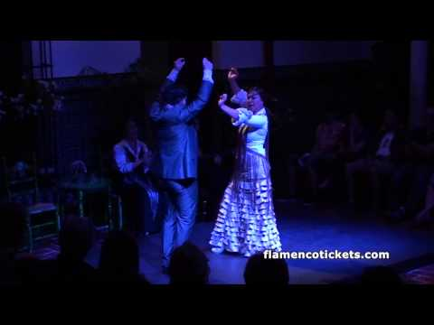 La Casa del Flamenco Flamenco Show in Seville - Video 1 (Flamencotickets.com)