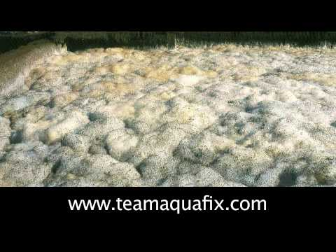 Reducing Foam In A Wastewater Treatment Plant