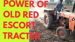 पुराने एस्कॉर्ट ट्रैक्टर की जुताई शक्ति power of old red escort tracter