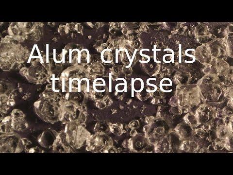 Alum crystallization Timelapse.