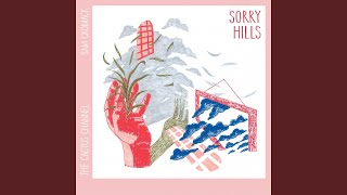 Play Sorry Hills (feat. Sam Cromack)