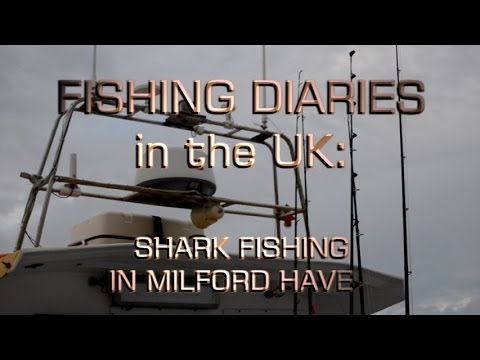 Shark fishing out of Milford Haven