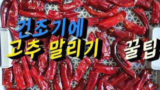 고추말리기 ➡️집에서 식품건조기(리큅건조기7단)로  깨…