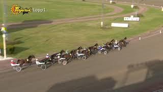 Vidéo de la course PMU PRIX JOIE BAROQUE