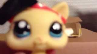 How To Make A Lps Toy Dollhouse