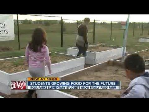 Students grow food
