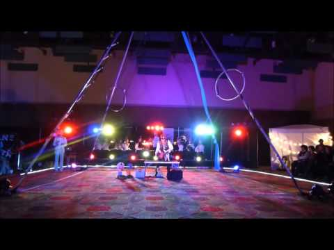 "Papillon dog ""Dash"" performing circus tricks at Teslacon VI"
