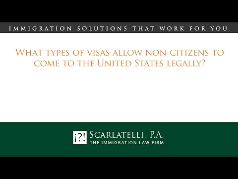 What types of visas allow non-citizens to come to the United States legally?