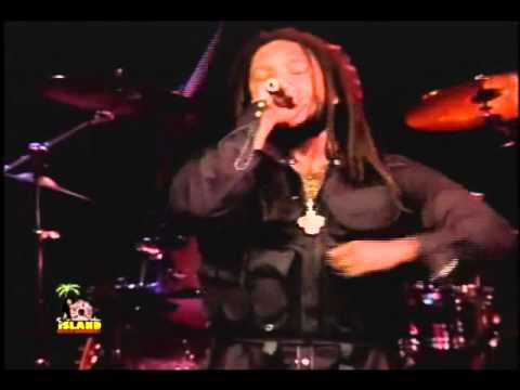 Stephen Marley feat Damian Marley  The Traffic Jam
