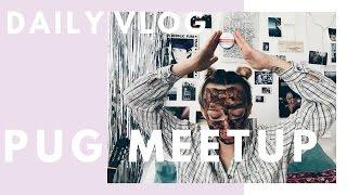 DAILY    Meet-up mopsów & maska błotna ♡