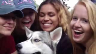 Alpha Xi Delta Syracuse Recruitment Video 2017