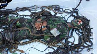 Download Gerak Dikit Nyawa Melayang! 10 Latihan Militer Paling Kejam dan Menyedihkan di Dunia