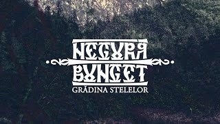 negura bunget   gradina stelelor semi acoustic live in reims