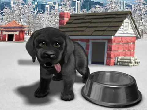 Free Virtual Dog Games