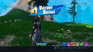 MY FIRST SOLO WIN IN 6 MONTHS - Fortnite Stream Highlights #2