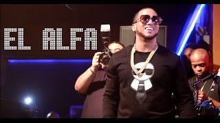 El Alfa Amazing Live Performance at Salsa Con Fuego