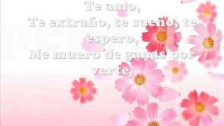 Tonto (Miriam Hernández)