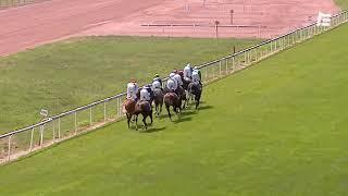 Vidéo de la course PMU GRAND PRIX D'AVENCHES