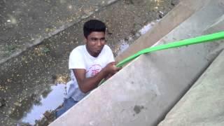 jamirata জামিরতা কলেজ বিপদে পরে এক্সক্স