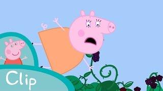 Peppa Pig - The Blackberry Bush (clip)