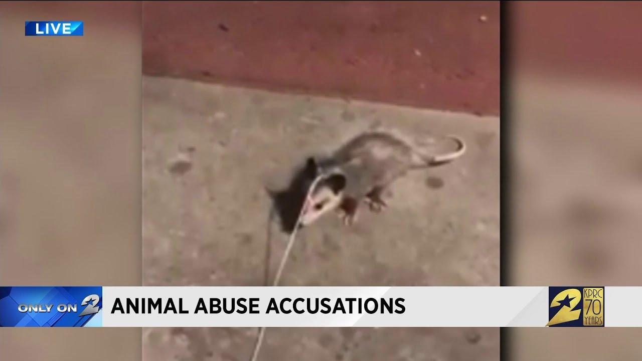 Video shows man using live opossum as fishing bait, woman says