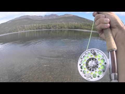 Pesca de Trucha Fontinalis con Mosca Seca (3wt Rod) - Pique en Vivo [GoPro]