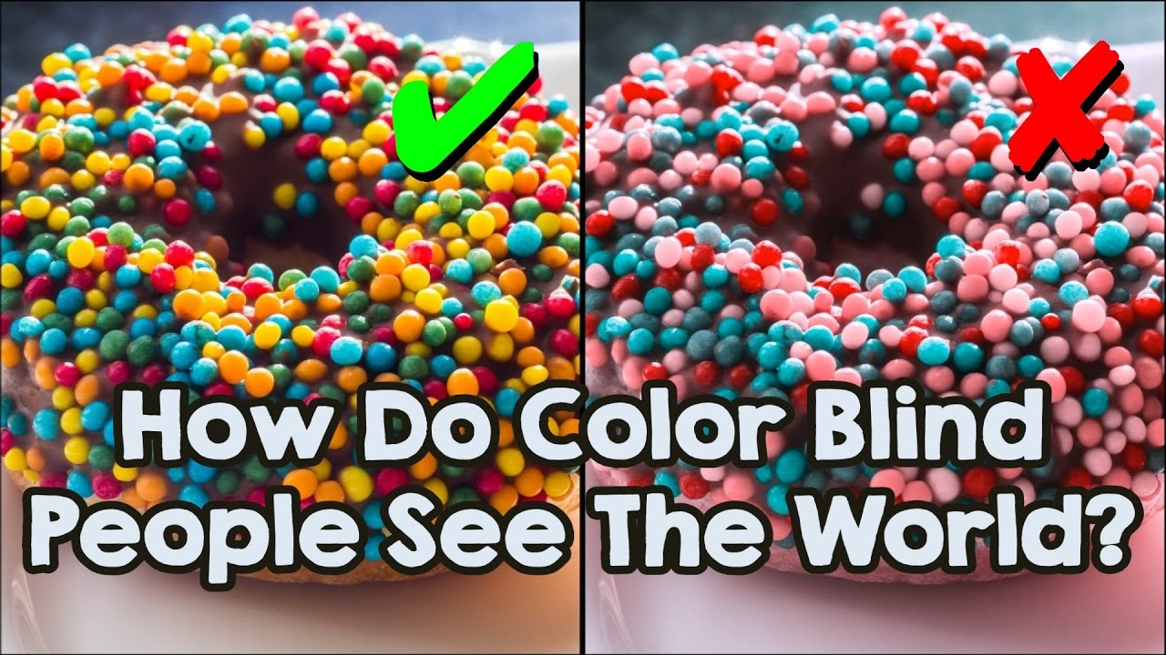 How do color blind people see the world youtube for What color do you like