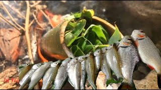 Catch Fish With Leaves | Grilled Fish With Bamboo Tube